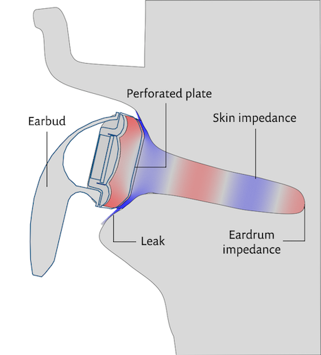 A cut view of the model geometry through the ear for the earbud setup.
