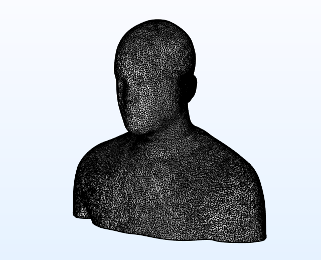 An image of an imported STL file of a scanned geometry of a human head.