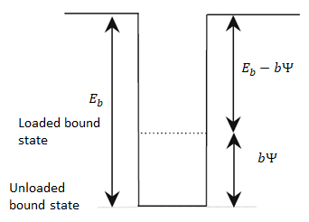 A schematic showing the bound state for cross-linked molecules.