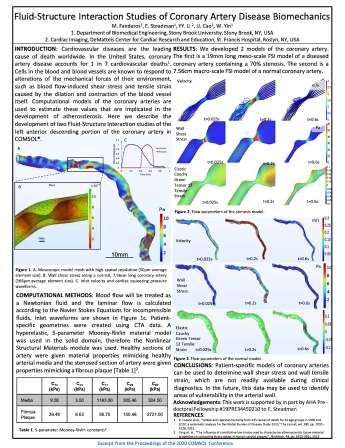A poster showing how researchers studied fluid-structure interaction in a coronary artery.