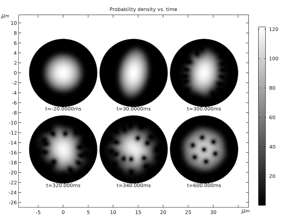 A results plot showing 6 different time instances of the computed particle density profile.