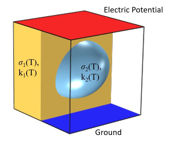 一个典型的焦耳热问题的示意图,两个电极之间的材料中包含杂质,且带有标记的部件。