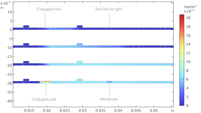 A plot showing the concentration field of the IgMC species as a function of time both at the conjugation pad and in the membrane of the rapid detection test for four different times and visualized in a rainbow color table.