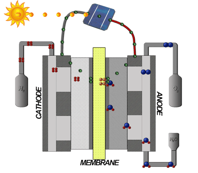 A schematic showing how an electrolyzer works, with the anode, cathode, and membrane parts labeled.