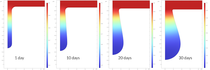 Four side-by-side plots of the pH in a corroding put at 1, 10, 20, and 30 days, modeled in COMSOL Multiphysics.
