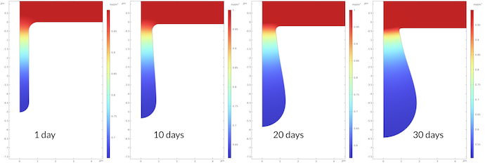 Four side-by-side plots showing the sodium ion concentration during the pitting corrosion process after 1, 10, 20, and 30 days.