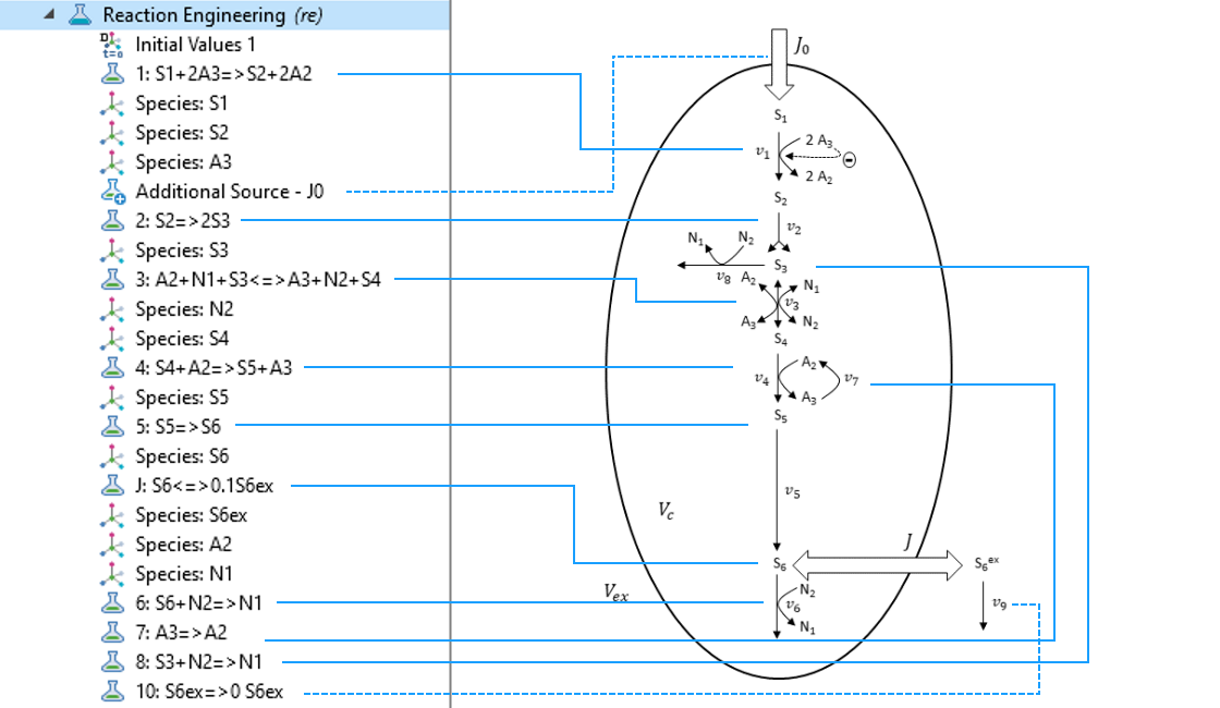 A screenshot of the Reaction Engineering interface in the model tree with the reaction scheme on the right and blue arrows pointing to the relevant equations.
